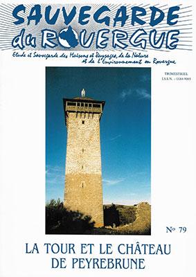 La Tour et le Château de Peyrebrune