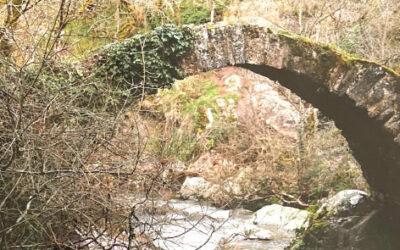 Revue – Vieux ponts antiques et médiévaux